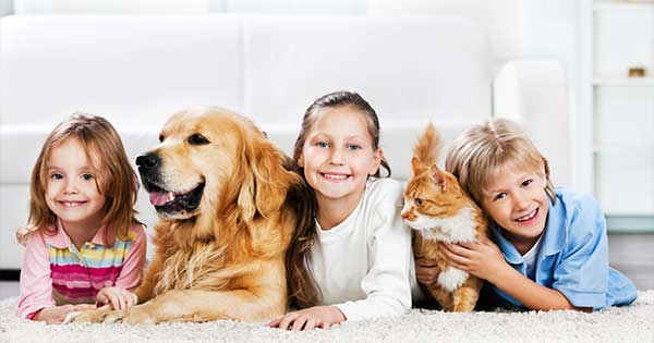 The Best Pet Safe Cleaning Products